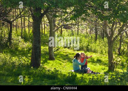 Jeune mère et curieux petit garçon âgé d'un an dans un bois, bois Cutteridge, Devon, Angleterre. Printemps (avril) Banque D'Images