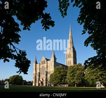 La cathédrale de Salisbury, Salisbury, Wiltshire, Angleterre. Printemps (mai) 2011. Banque D'Images