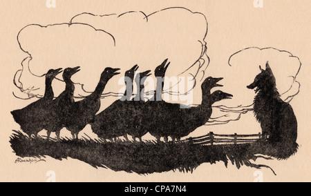 Illustration par Arthur Rackham le conte de Grimm, le renard et les oies. Banque D'Images