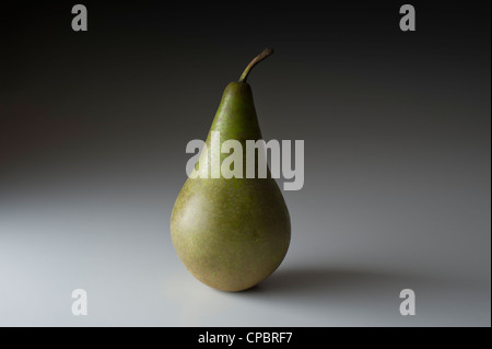 Les fruits et légumes crus frais PHOTOS STUDIO OIGNON POMME DE TERRE TOMATES POIVRE NOIX DE COCO POIRE AUCUN ARRIÈRE Banque D'Images