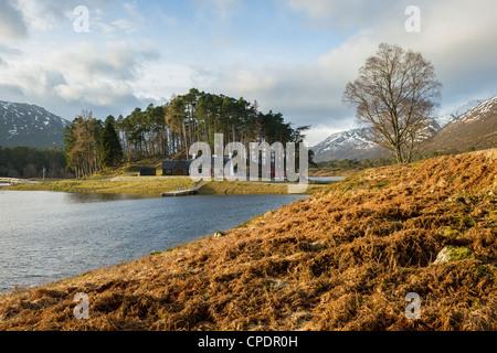 Chambre sur l'île, Glen Affric, Highlands, Scotland, UK Banque D'Images