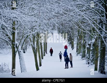 Hampstead Heath en hiver, au nord de Londres, Angleterre, Royaume-Uni, Europe Banque D'Images