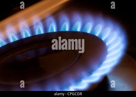 Sur une flamme de gaz de cuisson cuisine Banque D'Images