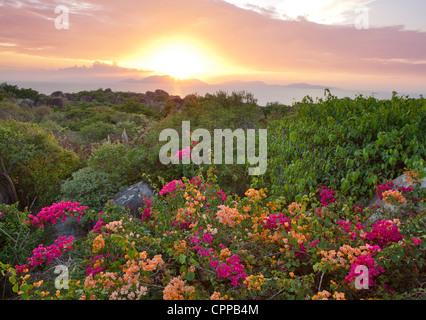 Virgin Gorda, îles Vierges britanniques, les Caraïbes: vue sur coucher de soleil sur les îles de la mer des Caraïbes Banque D'Images