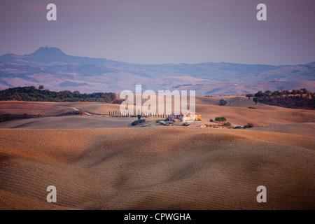 Paysage typique de la Toscane, près de San Quirico d'Orcia en Val D'Orcia, Toscane, Italie Banque D'Images