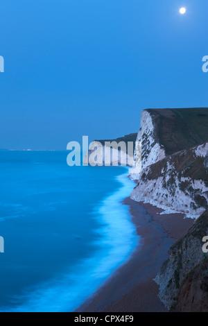 Clair de lune sur la côte jurassique, avec au-delà de Portland, Dorset, England, UK Banque D'Images