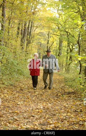 Couple de retraités marche à travers une forêt en automne, grossau, Basse Autriche, Autriche, Europe Banque D'Images