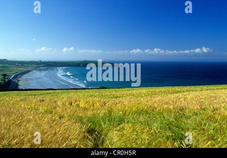 La France, Finistère, Parc Naturel Régional d'Armorique, presqu'île de Crozon, Anse de Caon, Pointe du Bellec Banque D'Images