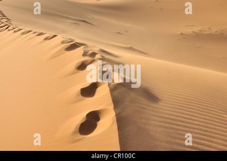 Empreintes de pas sur le sable du désert, des dunes de l'Erg Chebbi, Maroc, Afrique, PublicGround Banque D'Images