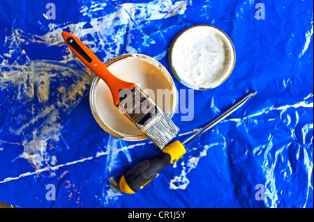 Bricolage à la maison pot de peinture avec le pinceau et tournevis Banque D'Images