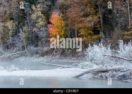 Givre sur la rivière Isar, à l'automne, l'Isar, Geretsried, Upper Bavaria, Bavaria, Germany, Europe