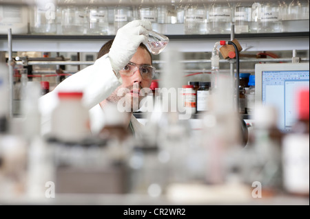 Technicien de laboratoire working in lab Banque D'Images