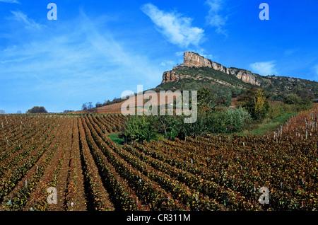 France, Saône et Loire, Mâconnais, La Roche de Solutré et vignoble de Pouilly Fuisse Banque D'Images