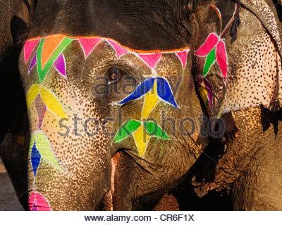 Avec l'éléphant face à la décoration colorée. Banque D'Images