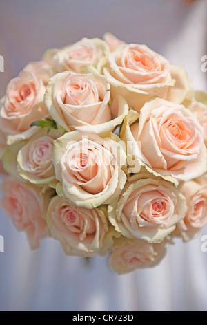 Allemagne, bride holding bouquet rose Banque D'Images