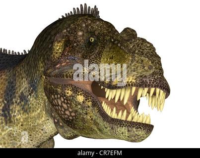 Illustration de la tête d'un dinosaure Tyrannosaurus (espèces) sur un fond blanc
