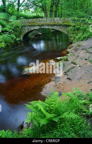 UK,South Yorkshire,Rivière,Sheffield,Rivelin Pack Horse Bridge Banque D'Images