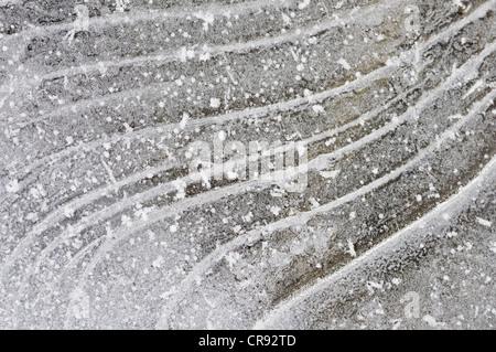 Structures sur une surface de glace, au milieu de la Réserve de biosphère de l'Elbe, Saxe-Anhalt, Allemagne, Europe Banque D'Images