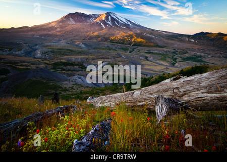 Mont St Helens Monument Volcanique National Banque D'Images