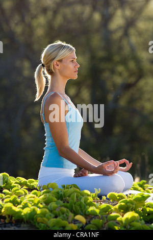 Femme pratique le yoga à Makena, Maui, Hawaii. Banque D'Images