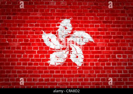 Une image de la Hong Kong flag peint sur un mur de briques dans une localisation urbaine Banque D'Images