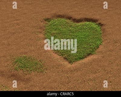 L'herbe sur terrain sableux formant un cœur, illustration Banque D'Images