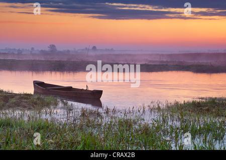 Lever du soleil paysage, Parc National de Narew, Pologne Banque D'Images