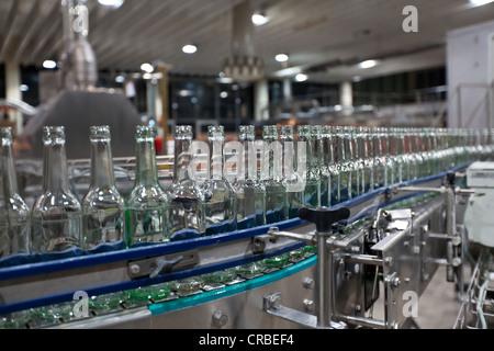 Les bouteilles de bière vides après le nettoyage, sur un convoyeur à courroie, contraignant la brasserie, Francfort, Banque D'Images