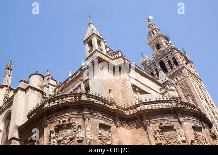 La Giralda, le clocher de la cathédrale de Santa Maria, UNESCO World Heritage Site, Séville, Andalousie, Espagne, Banque D'Images