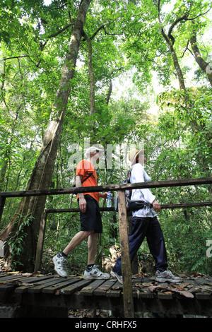 Les touristes sur rainforest trail à Cabo Blanco Nature Refuge, côte Mid-Pacific du Costa Rica. Banque D'Images