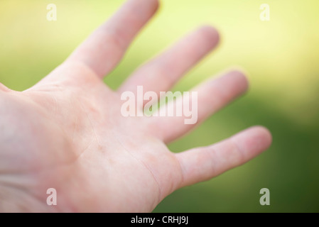 Paume de la main de l'homme Banque D'Images