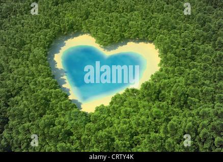L'étang en forme de cœur dans une forêt tropicale Banque D'Images