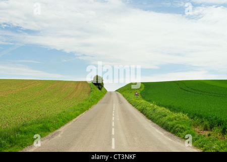 Chemin Rural entre champs de culture Banque D'Images