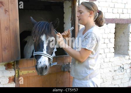 L'équitation Banque D'Images