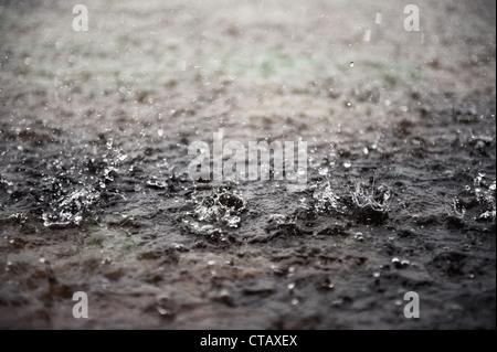 Détail des gouttes de pluie pendant la mousson, Nilaveli, Sri Lanka Banque D'Images