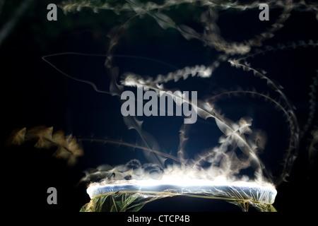 Photo - Time-Lapse montrant le modèle de vol des papillons de nuit attirés par la lumière vive Banque D'Images