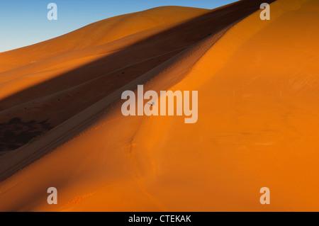 Belle dune de sable au lever du soleil dans le Sahara près de Merzouga, Erg Chebbi, Maroc Banque D'Images