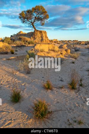Les tendances dans les dunes de sable les murs de la Chine à Mungo National Park, New South Wales, Australie