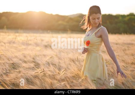 Femme marche à travers un champ de blé, d'exécution rêveusement ses doigts sur les épis de blé Banque D'Images