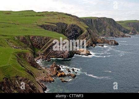 Vue le long fleuve Abbs Head promenade côtière, North Berwick, East Lothian, Scotland, UK, Europe de l'Ouest. Banque D'Images