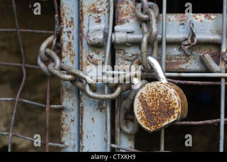 Rusty cadenas anciens et la chaîne sur une ancienne porte de la cage de métal. Banque D'Images
