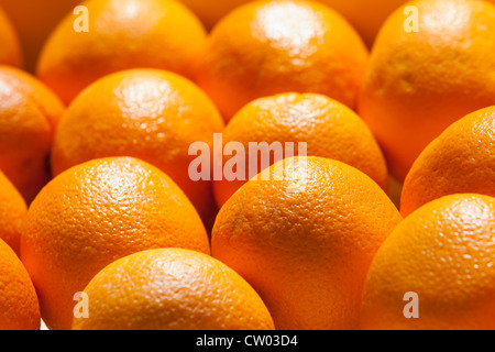 La production locale de Corse orange sur la vente au marché Ajaccio Banque D'Images