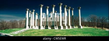 Modifié numériquement, contraste élevé image de la capitale historique des colonnes à l'Arboretum National Banque D'Images