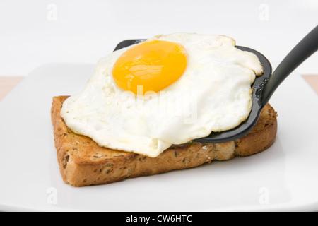 L'œuf frit servi sur tranche de pain grillé sur plaque blanche grenier Banque D'Images