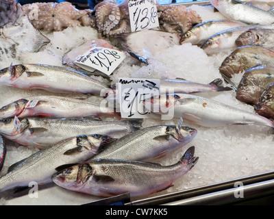 Poisson au marché aux poissons du Rialto à Venise Banque D'Images