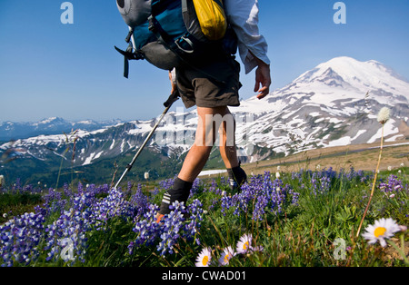Femme backpacker sur Cowlitz Divide, Mount Rainier National Park, Washington, USA Banque D'Images