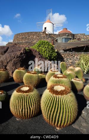 Jardin de cactus (Cactus Garden) avec moulin Banque D'Images