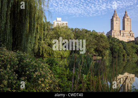 Central Park, New York City au lac tôt le matin en été Banque D'Images