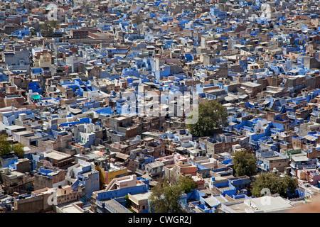 Voir plus de maisons dans la ville bleue de Jodhpur, Rajasthan, India