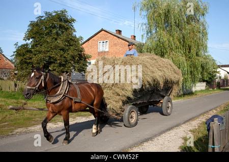 L'homme en tirant sur le haut de charge de foin le long village-rue. Mala Wola Pologne centrale Banque D'Images